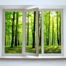 視点効果を生かした庭造り「フォーカルポイントとフレーミング効果」