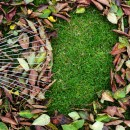 メンテナンス性を考えた庭のリフォーム