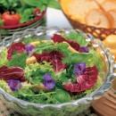 日々の料理に使うハーブや、薬味となる野菜を花壇で育ててみませんか? 摘みたてのハーブはフレッシュな香りが抜群で、サラダや肉料理、パスタなど、さまざまな料理に合わせることができます。今回は、手軽に育てられるハーブや野菜のある庭づくりをご紹介します。