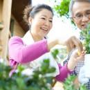 高齢者の暮らしを豊かにする