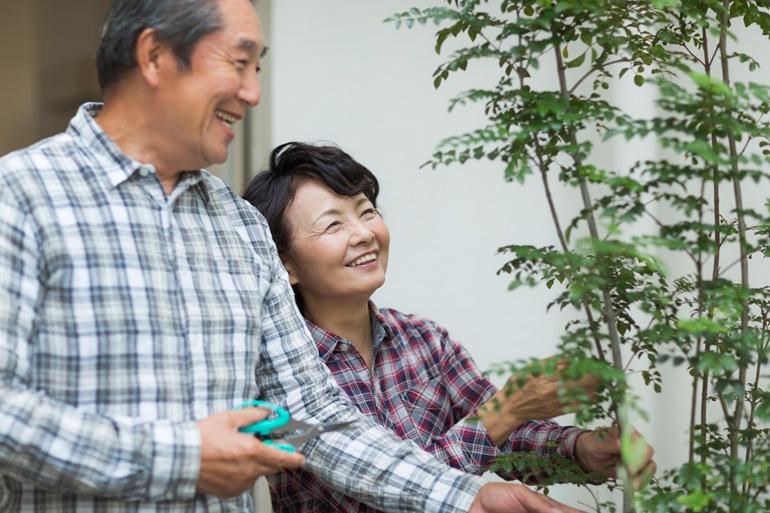 高齢者にとって安心できる庭とは